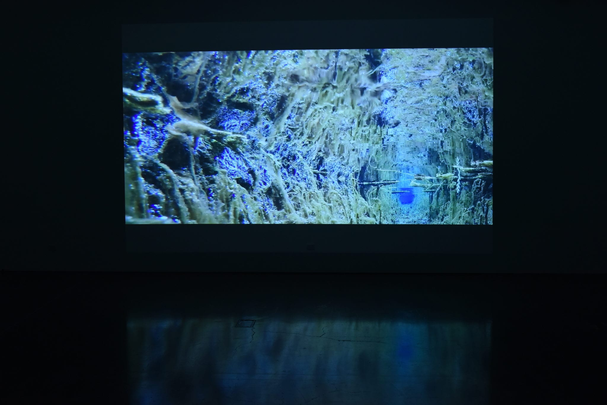 Exhibition documentation, The Stream by Hiroya Sakurai, 2 February to 24 March 2019, Gallery 3, Latrobe Regional Gallery. Photograph: Latrobe Regional Gallery.